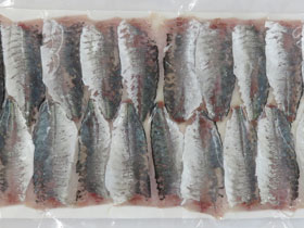 Filleted horse mackerel